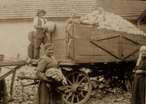 Krautwagen